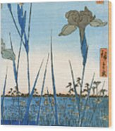 Japan: Iris Garden, 1857 Wood Print