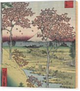 Japan: Maple Trees, 1858 Wood Print