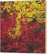 Japan Vibrant Leaves Wood Print