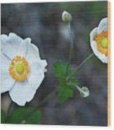 Japanaese Anemone Wood Print