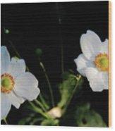Japanese Anemone Flower Wood Print