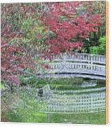 Japanese Garden Bridge In Springtime Wood Print