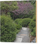 Japanese Garden I Wood Print