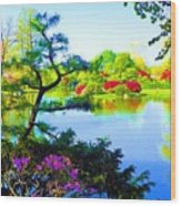 Japanese Garden In Spring Wood Print