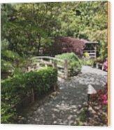 Japanese Garden Path With Azaleas Wood Print