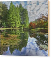 Japanese Garden Pond I Wood Print