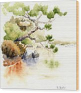 Japanese Garden Pond Sketch Wood Print