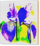 Japanese Iris Pop Art Abstract Wood Print