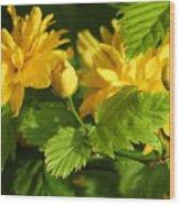 Japanese Kerria #2 Wood Print