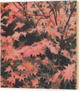 Japanese Maple - Nature Art Wood Print