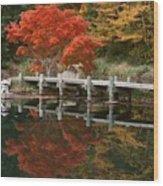 Japanese Reflection Wood Print