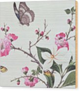 Japonica Magnolia And Butterflies Wood Print