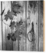 Japton Door Wood Print