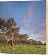 Jara's Wind Wood Print