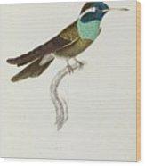 Jardine Wood Print