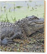 Jarvis Creek Gator Wood Print
