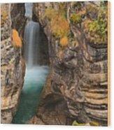 Jasper Maligne Canyon Waterfall Wood Print
