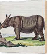Javan Rhinoceros, Endangered Species Wood Print