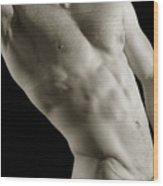 Javier Torso 4 Wood Print