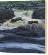 Jay Cooke State Park Wood Print