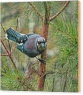 Jay Painterly Wood Print