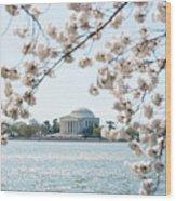 Jefferson Memorial Blossoms Wood Print
