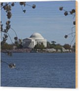 Jefferson Monument Wood Print