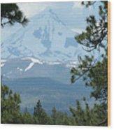 Jefferson Pines Wood Print