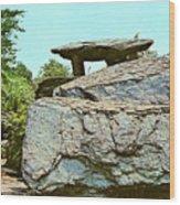 Jefferson Rock  Wood Print