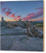 Jeffrey Pine Dawn Wood Print