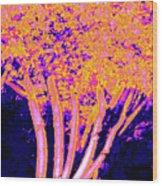 Jelks Fingerling 3 Wood Print