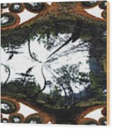 Jellin Wood Print