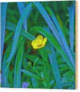 Jellow Flower Wood Print