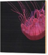 Jelly Wood Print