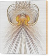 Jelly Fish Art Wood Print