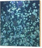 Jellyfish Collage Wood Print