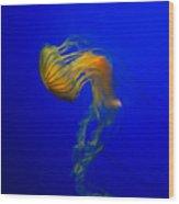 Jellyfish From The Deep Blue Wood Print by Nila Newsom