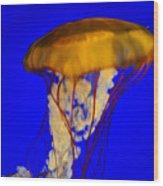 Jellyfish In Blue Waters Wood Print