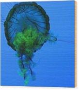 Jellyfish In Green Wood Print