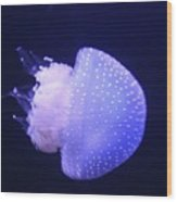 Jellyfish In Motion Wood Print