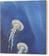 Jellyfish In Unison Wood Print