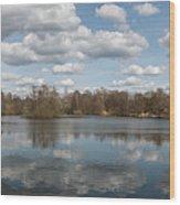 10557 Jenfelder Moor Wood Print