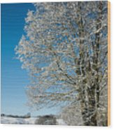 Jenne Farm Winter In Vermont Wood Print