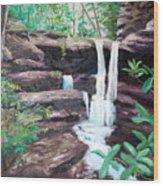 Jenny Falls Wood Print