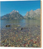 Jenny Lake Wood Print