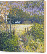Jeremiahs Field Wood Print