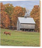Jericho Hill Vermont Horse Barn Fall Foliage Wood Print