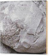 Jericho: Human Skull Wood Print