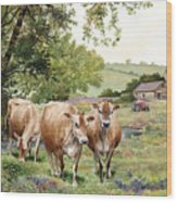 Jersey Cows Wood Print