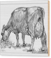Jersey Milking Cow Wood Print